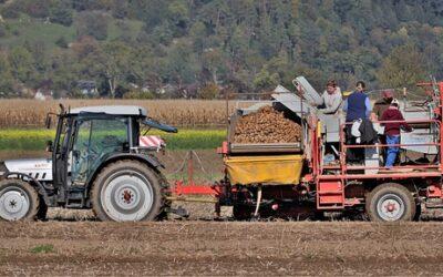 Come trovare clienti azienda agricola: 3 modi per acquisire valore