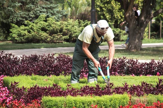 Come trovare clienti giardiniere